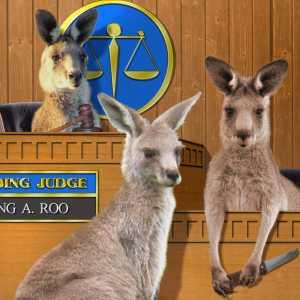 Kangaroos! 2 contest 1
